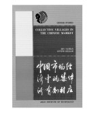 Collective Villages in the Chinese Market