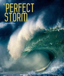The Perfect Storm Book