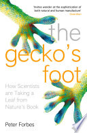 The Gecko   s Foot  How Scientists are Taking a Leaf from Nature s Book