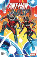 Ant Man And The Wasp Lost Found