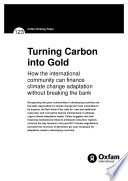 Turning Carbon Into Gold How The International Community Can Finance Climate Change Adaptation Without Breaking The Bank