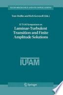 IUTAM Symposium on Laminar Turbulent Transition and Finite Amplitude Solutions