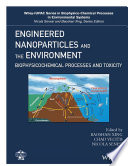 Engineered Nanoparticles and the Environment