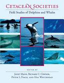 Cetacean Societies