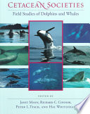 """""""Cetacean Societies: Field Studies of Dolphins and Whales"""" by Janet Mann, Richard C. Connor, Peter L. Tyack, Hal Whitehead"""
