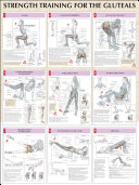 Strength Training Anatomy Gluteals Poster