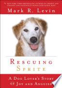 Rescuing Sprite image