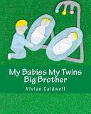 My Babies, My Twins Big Brother