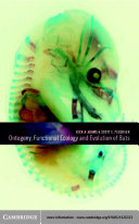 Ontogeny, Functional Ecology, and Evolution of Bats