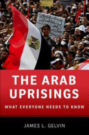 The Arab Uprisings What Everyone Needs To Knowrg