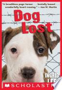Dog Lost image