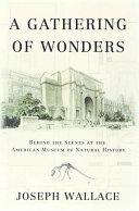 A Gathering of Wonders Pdf