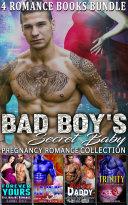 Bad Boy's Secret Baby [Pdf/ePub] eBook