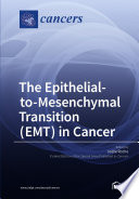 The Epithelial-to-Mesenchymal Transition (EMT) in Cancer