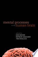 Mental Processes in the Human Brain Book