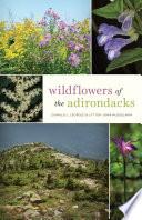 Wildflowers of the Adirondacks Book PDF