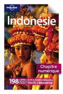 INDONÉSIE - Préparer son voyage et Carnet pratique