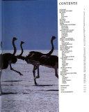 Flightless Birds   Birds of Prey Book