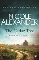 Cedar Tree  The