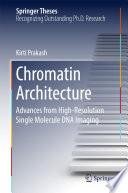 Chromatin Architecture