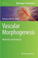 Vascular Morphogenesis