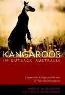 Kangaroos in Outback Australia