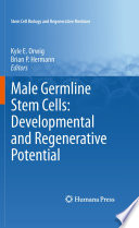 Male Germline Stem Cells  Developmental and Regenerative Potential