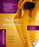 Human Anatomy