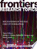 Mechanisms of Neural Circuit Formation