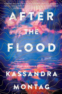 link to After the flood : a novel in the TCC library catalog