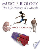 Muscle Biology