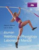 Human Anatomy   Physiology Laboratory Manual  Fetal Pig Version