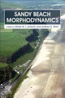 Sandy Beach Morphodynamics
