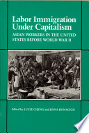 Labor Immigration Under Capitalism