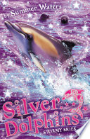 Stormy Skies  Silver Dolphins  Book 8