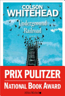 Underground Railroad Pdf/ePub eBook