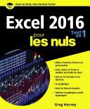 Excel 2016 Tout en un pour les Nuls Pdf/ePub eBook