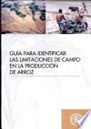 Guia Para Identificar Las Limitaciones De Campo En La Produccion De Arroz