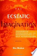 Ecstatic Imagination  The