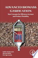 Advanced Biomass Gasification