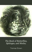 The Book of Butterflies  Sphinges  and Moths