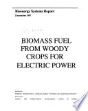 Biomass Fuel from Woody Crops for Electric Power