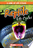 Reptile life cycles / by Bray Jacobson.