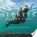 Secrets Of The Seas PDF