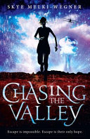 Pdf Chasing the Valley