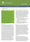 Synopsis  Farmers    grain storage and losses in Ethiopia  Measures and associates