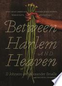 Between Harlem And Heaven PDF