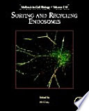 Sorting and Recycling Endosomes