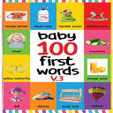 Baby 100 First Words V 3 Book