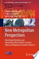 New Metropolitan Perspectives Book